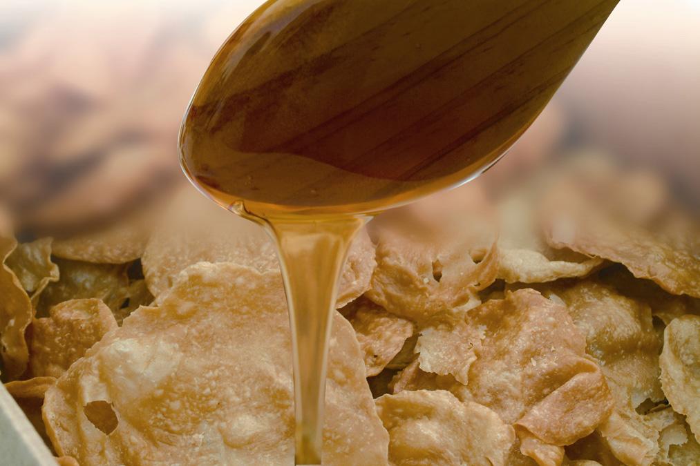 Degustació bunyols amb mel FIRABRIL
