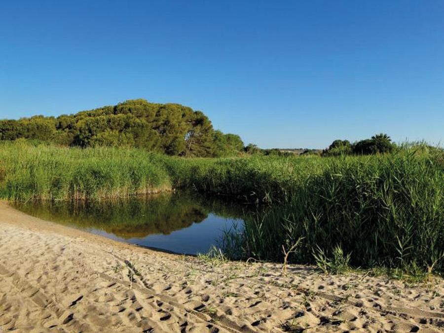 altafulla-desembocadura-turisme-tarragona